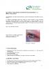 2011-11_Newsletter