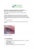 2012-04_Newsletter